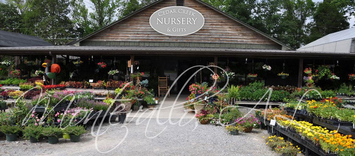 Superbe Garden Supplies
